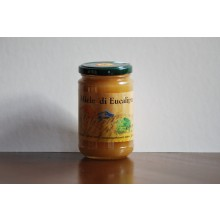Miele di Eucalipto 500g